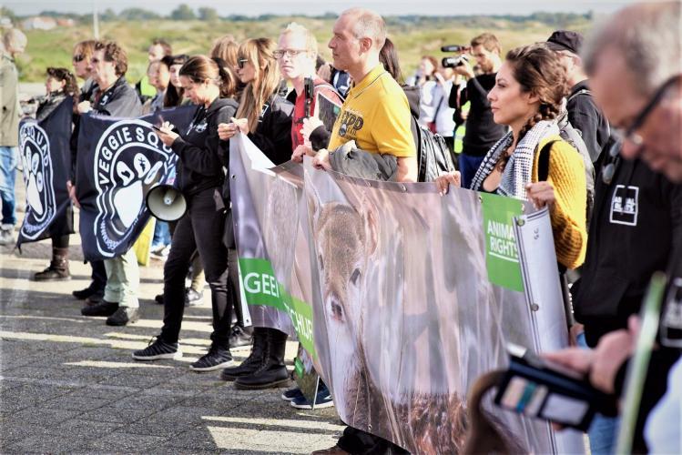 Protest tegen afschot damherten. Foto: Lammert van Raan.