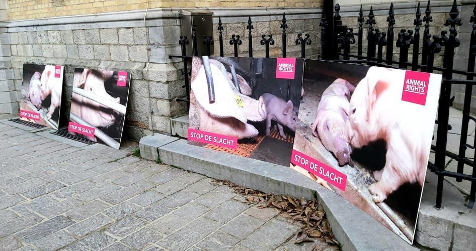 Animal Rights vraagt aandacht voor de rechtszaak met een stil protest.