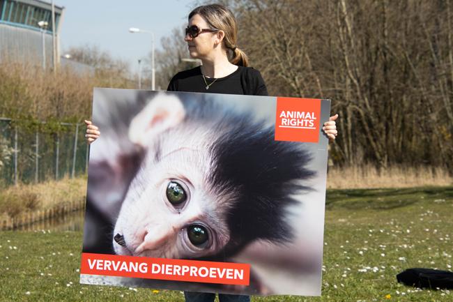 Animal Rights in actie tegen dierproeven op apen BPRC