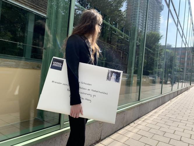 Brandbrief aan minister Schouten: stop dierproeven voor de bontindustrie