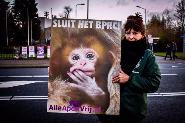 Protesten gaan door