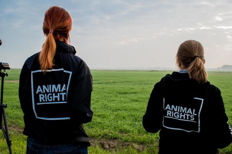 Animal Rights is vreedzaam en geweldloos.