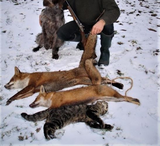 Poseren met dode dieren.