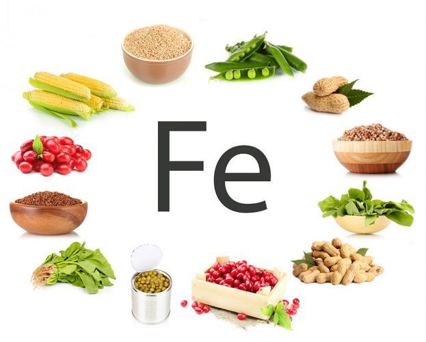 Afbeeldingsresultaat voor ijzer voeding