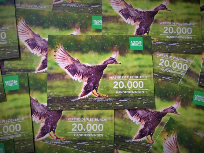 Animal Rights verzamelde in enkele maanden 20.000 handtekeningen.