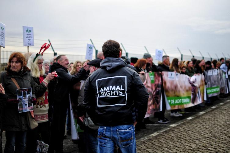 Een protest tegen het afschot van de damherten in 2017.
