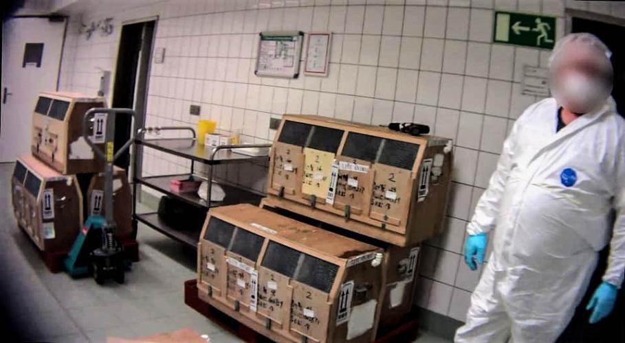 Primate transportboxes at LPT Fotocredit: Soko Tierschutz/Cruelty Free International