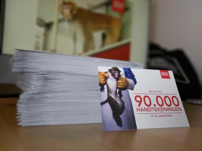 90.000 handtekeningen voor een verbod op apenexperimenten