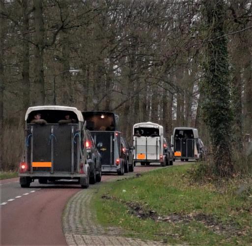 De jagers werden in trailers vervoerd.