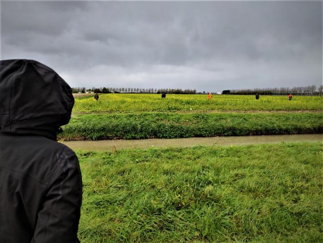 Activisten zijn getuige van een drijfjacht in Noord-Holland.