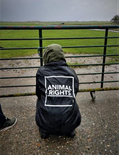 Animal Rights keert terug naar Noord-Holland.