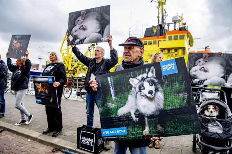 Animal Rights en Bont voor Dieren in actie tegen bontverkoper Skihut