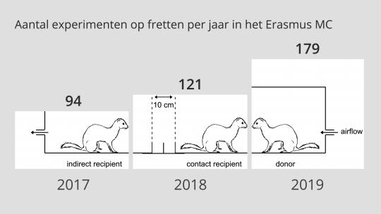 Aantal experimenten op fretten per jaar in het Erasmus MC